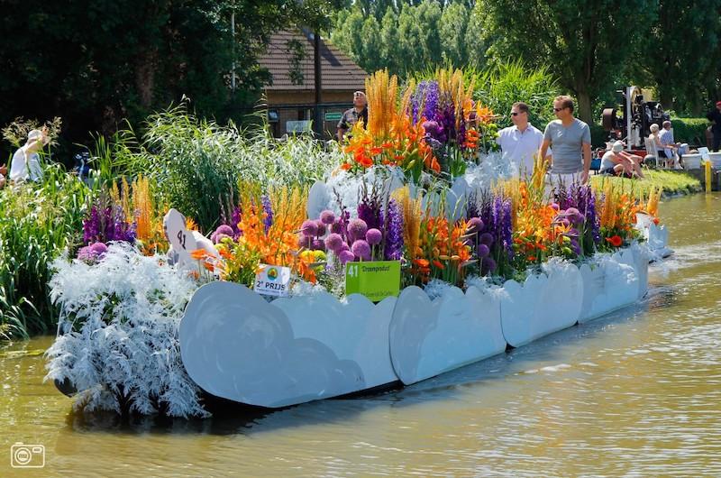 Bloemen en varen in Den Haag